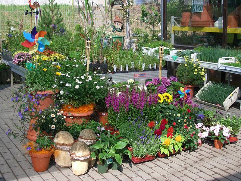 Gartenmarkt Gartenerde Pflanzen Haushaltswaren Und Gartengeräte